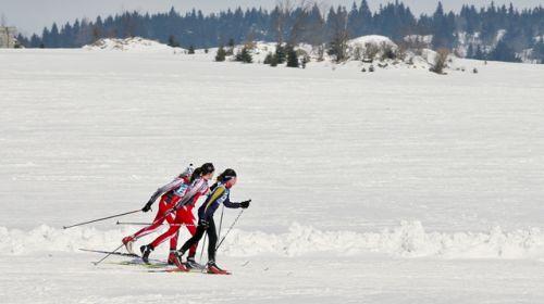 Biathlon-Bereich Eduard