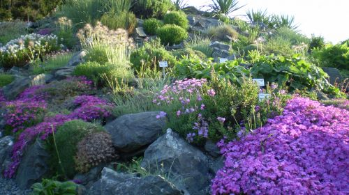 Botanischer Garten Adorf
