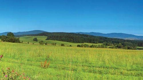 Landschaftsschutzgebiet Böhmerwald (Český Les)