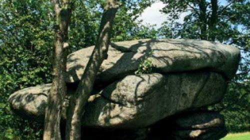 ND Steinerner Pilz (Kamenný hřib)