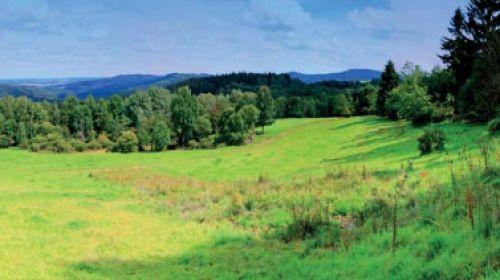 ND Quelle des Katharinenbachs (Prameniště Kateřinského potoka)