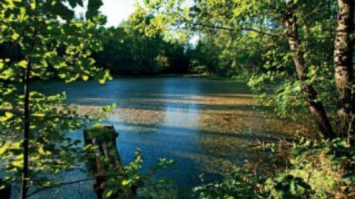 ND Zu sieben Teichen (U Sedmi rybníků)