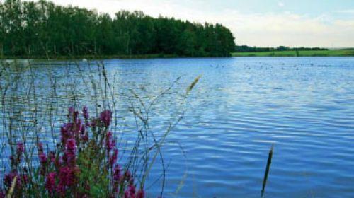 NR Tissa-Teiche (Tisovské rybníky)