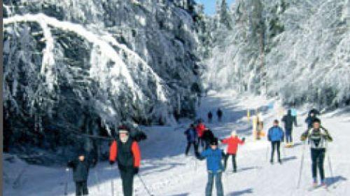 Erstes Grenzüberschreitendes Skilanglauf - Loipennetz Deutschland - Tschechien 'Silberhütte-Goldbach/Zlatý potok