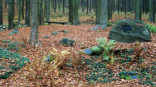 Geologischer Park Kaiserwald (Slavkovský les)