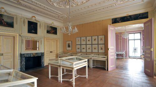 Staatliche Bücher- und Kupferstichsammlung
