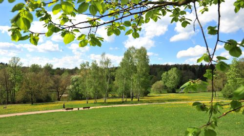 Stadtpark Plauen