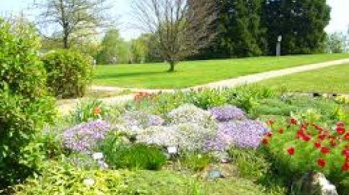 Zahrady, parky